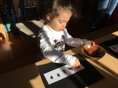 Erika is engaging in mathematical learning, using one-to-one correspondence to put beans on the bean chart.
